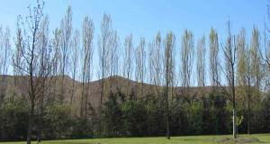 """Le """"montagne"""" create dal deposito di rifiuti speciali dalla ditta AEC a San Possidonio"""
