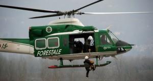 Un'operazione del Corpo Forestale